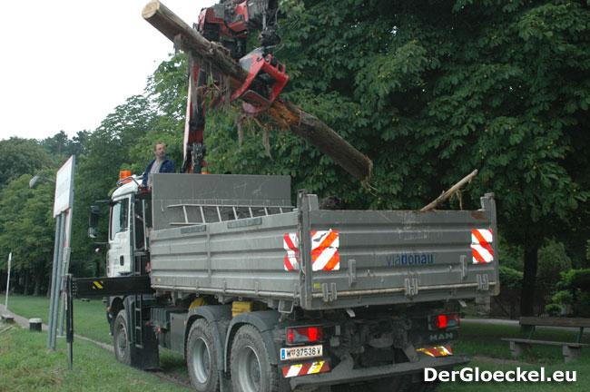 Aufräumarbeiten der ViaDonau nach dem Hochwasser Juni 2009 | Foto: DerGloeckel.eu